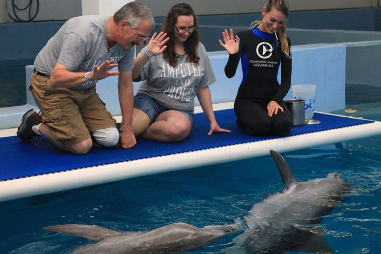 Amputee counselors meet dolphins