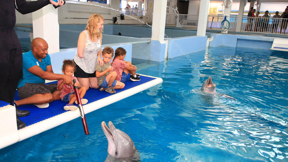 Tiffany Johnson family on dolphin platform