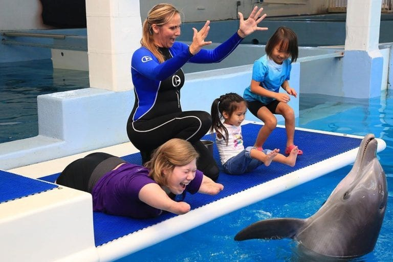 Camp No Limits participants meeting dolphins