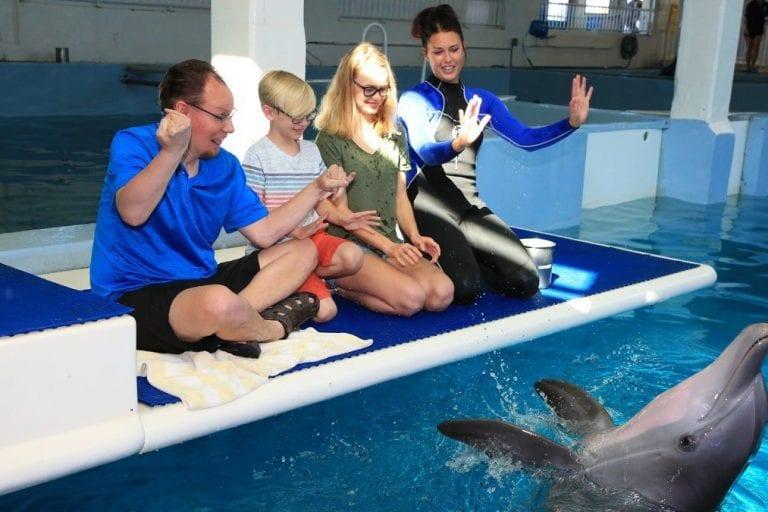 Family on dolphin platform
