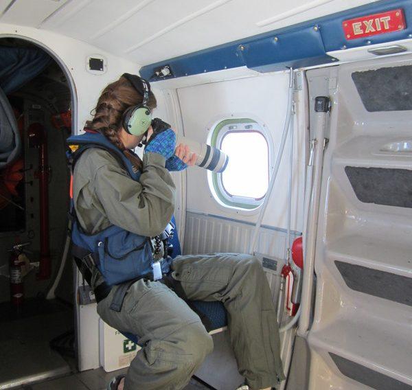 CMARI right whale aerial surveyor