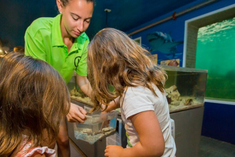 girls looking in touch tank