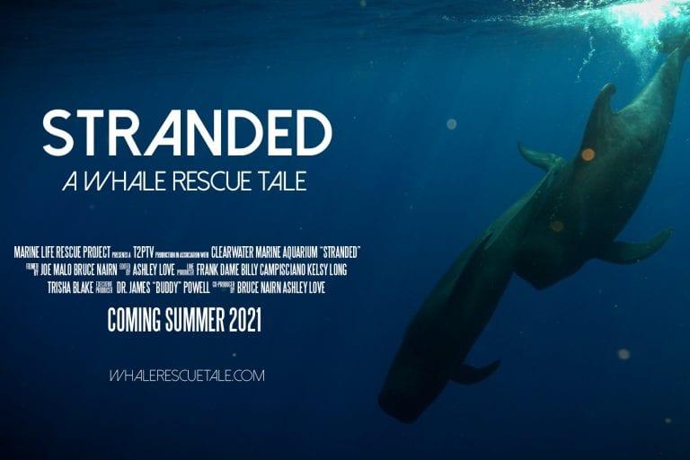 Stranded Poster 1