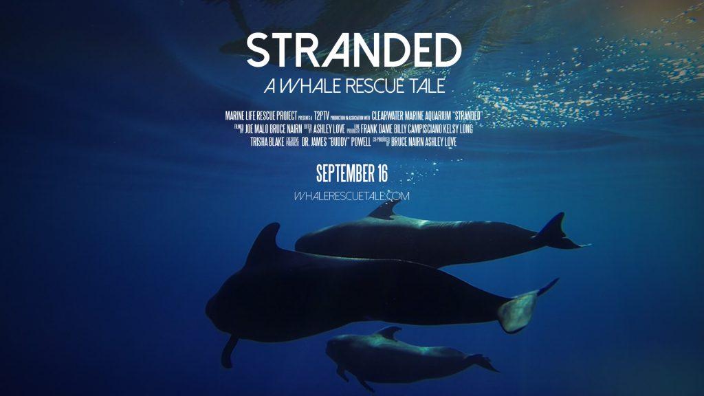 Stranded film premiere